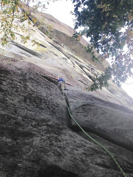 Rock Climbing Photo: Honnolding above the initial crack section.