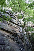 Rock Climbing Photo: New River Gorge Climbing