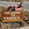 Welcome to Fawnskin, Big Bear North
