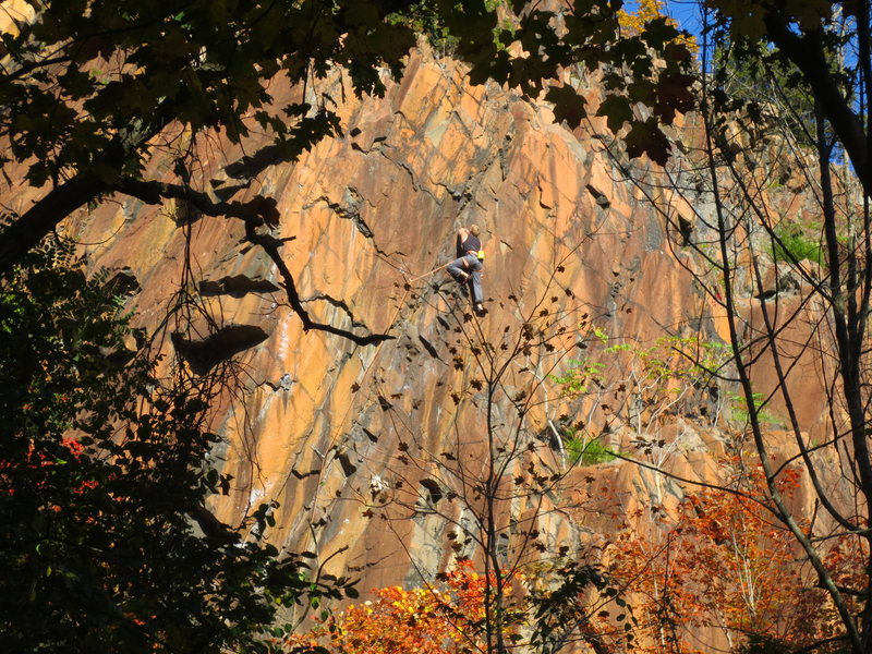 Rock Climbing Photo: Shylo cruising up the Devil's Cut on a beautiful f...