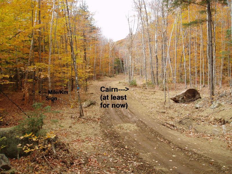 Rock Climbing Photo: [Access photo#1] Junc. of logging road, ski trail ...