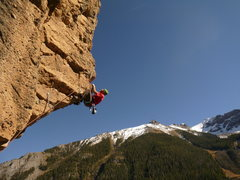 Rock Climbing Photo: Yep, it's in Ouray!