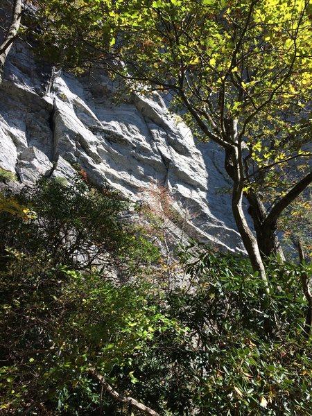Rock Climbing Photo: The steep business