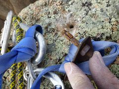 "Rock Climbing Photo: 1/4"" stud bolt"