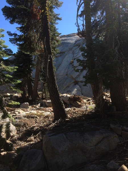 Full route can be seen between the trees.  Head up the slab to the hand crack with the bush in it.  Trend left to the ledge atop the flake.  A few slab moves into an easy crack to the top.