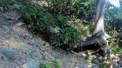 Rock Climbing Photo: Climber top-out erosion