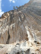 "Rock Climbing Photo: 5.11d ""buff"" these tufas just say ""..."