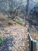 Rock Climbing Photo: Looking at the 5th switchback where you head up in...