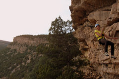 Rock Climbing Photo: Kristine Challk coming down off The Cretacean with...