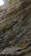 Rock Climbing Photo: Chica Loca- 11a.