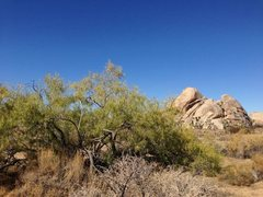 Rock Climbing Photo: Cap Rock and a touch of color, Joshua Tree NP