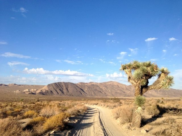 Geology Tour Road view, Joshua Tree NP