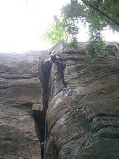 Rock Climbing Photo: having fun on the Tree Route