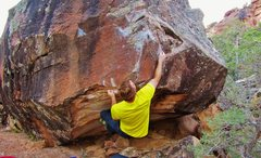 Rock Climbing Photo: Sticking the sloping edge on The Haxan Cloak.