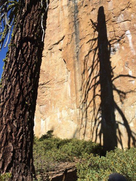 Rock Climbing Photo: Dreamtime