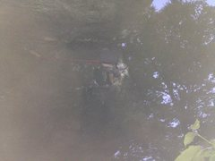 Rock Climbing Photo: The bat hang