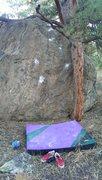 Rock Climbing Photo: Treefort.