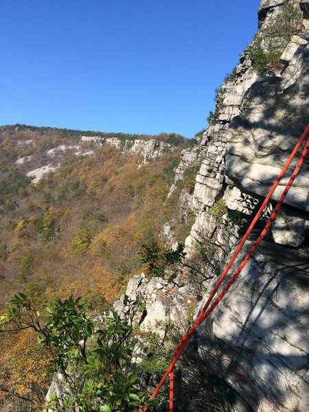 Rock Climbing Photo: The cliff as seen from the howling ledge.