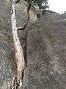 Rock Climbing Photo: Beginning of Pitch 4.