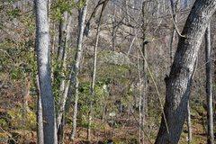 Rock Climbing Photo: Trail to First Born Traverse.