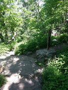 Rock Climbing Photo: Approach from top: Hike up Balanced Rock trail to ...