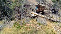 Rock Climbing Photo: Stand start, midway up the sit start