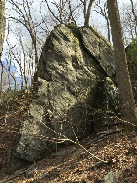 Pretty much the only rock at this area. Looks like some potential for bouldering but the landings are sketchy. I think Indy mentions some TR climbs.