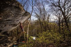 Rock Climbing Photo: Principia (V8FA) GHSP