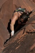 Rock Climbing Photo: The ozze 5.10- Indian Creek
