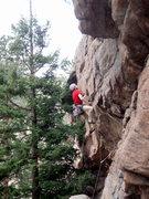 Rock Climbing Photo: Guy on P1 Barn Door Ballet.