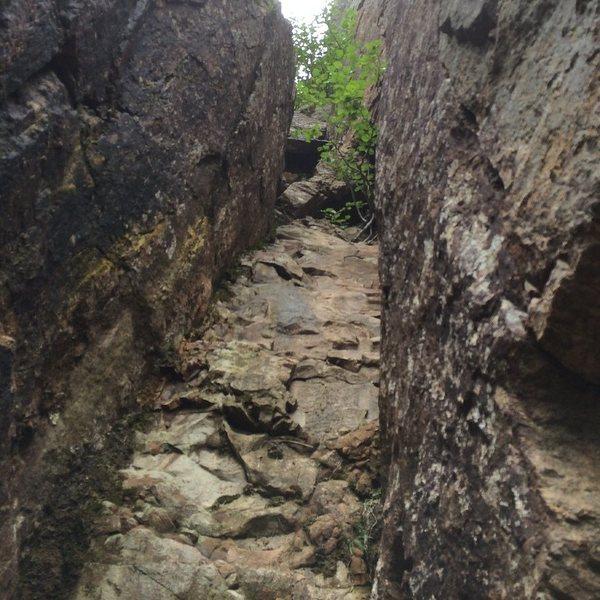 Rock Climbing Photo: VO2?