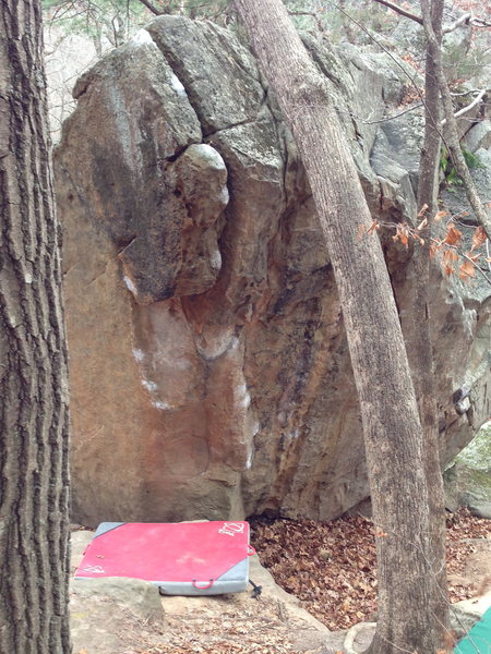 Rock Climbing Photo: Framed between trees: begin on the low right chalk...