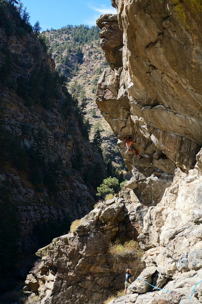 Rock Climbing Photo: Hanging Judge onsight attempt.