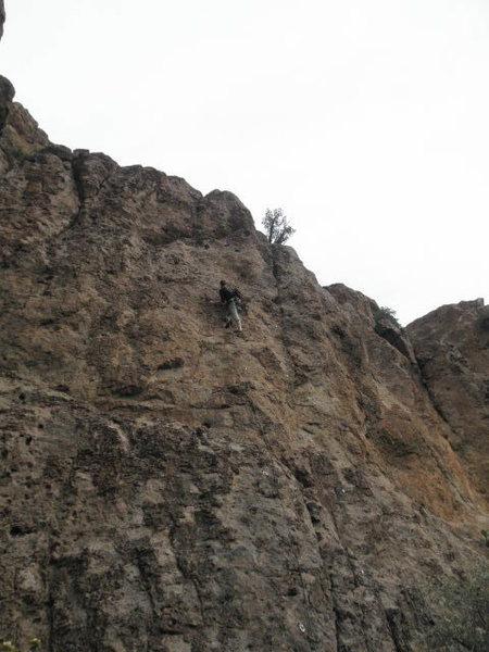 Rock Climbing Photo: Face #3