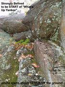 Rock Climbing Photo: START of What's Up Yankee