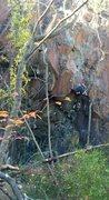 Rock Climbing Photo: Hunter heading onto the face.