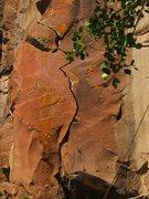 Rock Climbing Photo: The splitter.