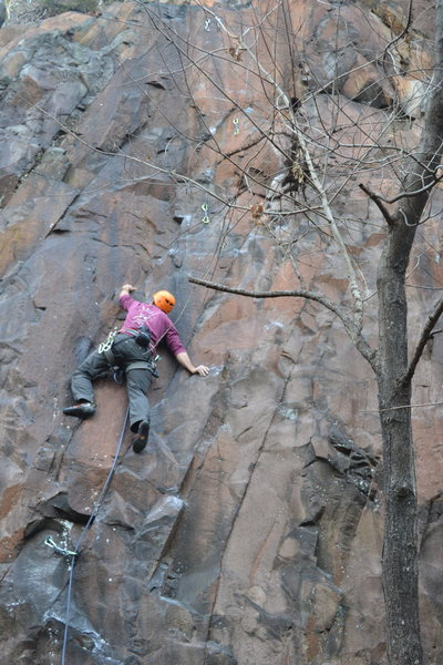 Me on the People's Rock