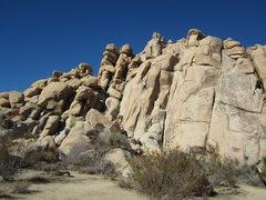 AFPA Rock