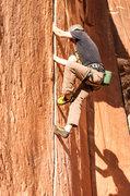 Rock Climbing Photo: Indian Creek clinic
