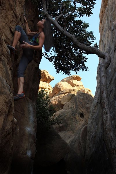 Rock Climbing Photo: If you look past the graffiti you may find this pl...