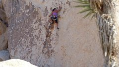 Rock Climbing Photo: Susan Peplow passing the 2nd bolt on Herman