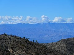 Rock Climbing Photo: Berdoo Canyon Road view, Joshua Tree NP