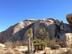 Rock Climbing Photo: Castle Rock (N Face), Joshua Tree NP