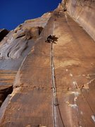 Rock Climbing Photo: Jenny leading Swedin-Ringle.  Nov 2014.