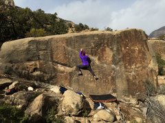 Rock Climbing Photo: Anna on Devastator