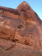 Rock Climbing Photo: Scotty Palmer leading the P3 north side splitter.