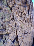 Rock Climbing Photo: Buttermilk Patina!