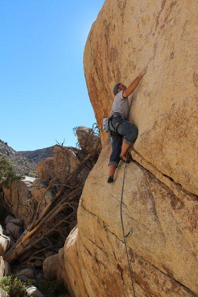 Rock Climbing Photo: Shock Therapy