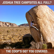 JTree campsite graphic 3